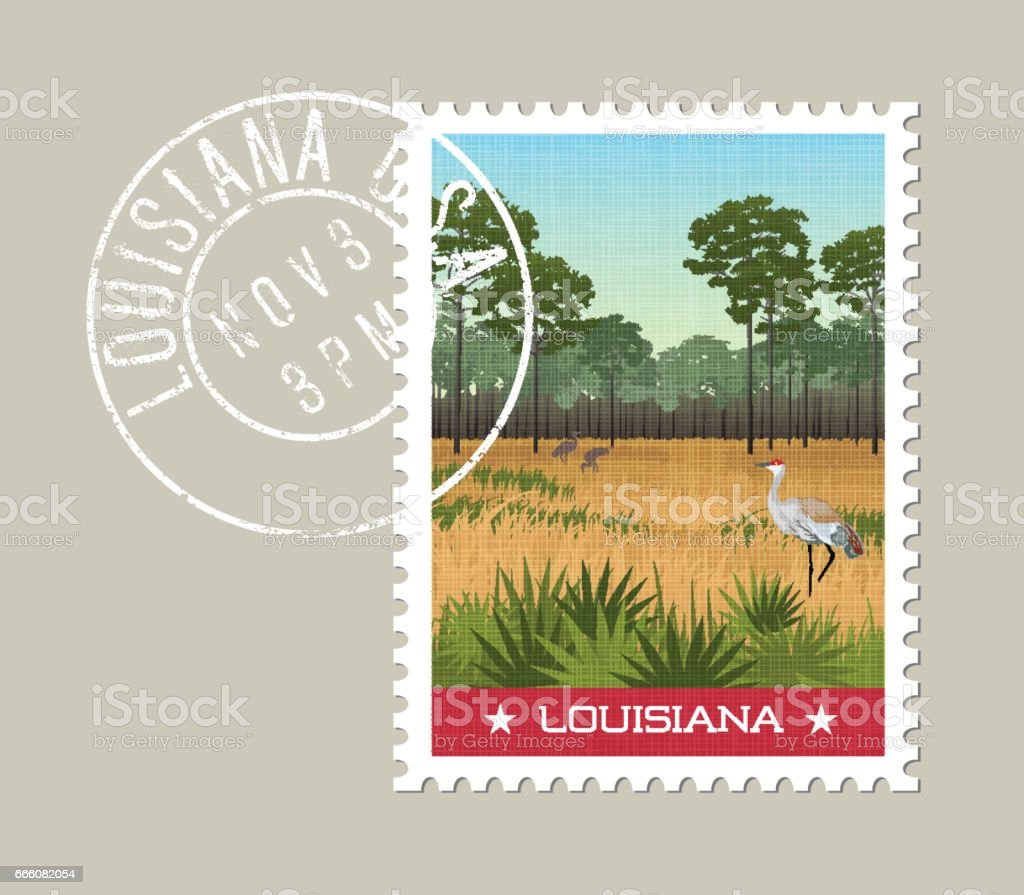 Louisiana postage stamp design. Vector illustration of Sandhill cranes and pines in wetland nature preserve. vector art illustration