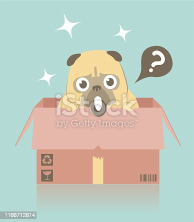 istock Lovable dog in a cardboard box waits to be adopted 1166712614