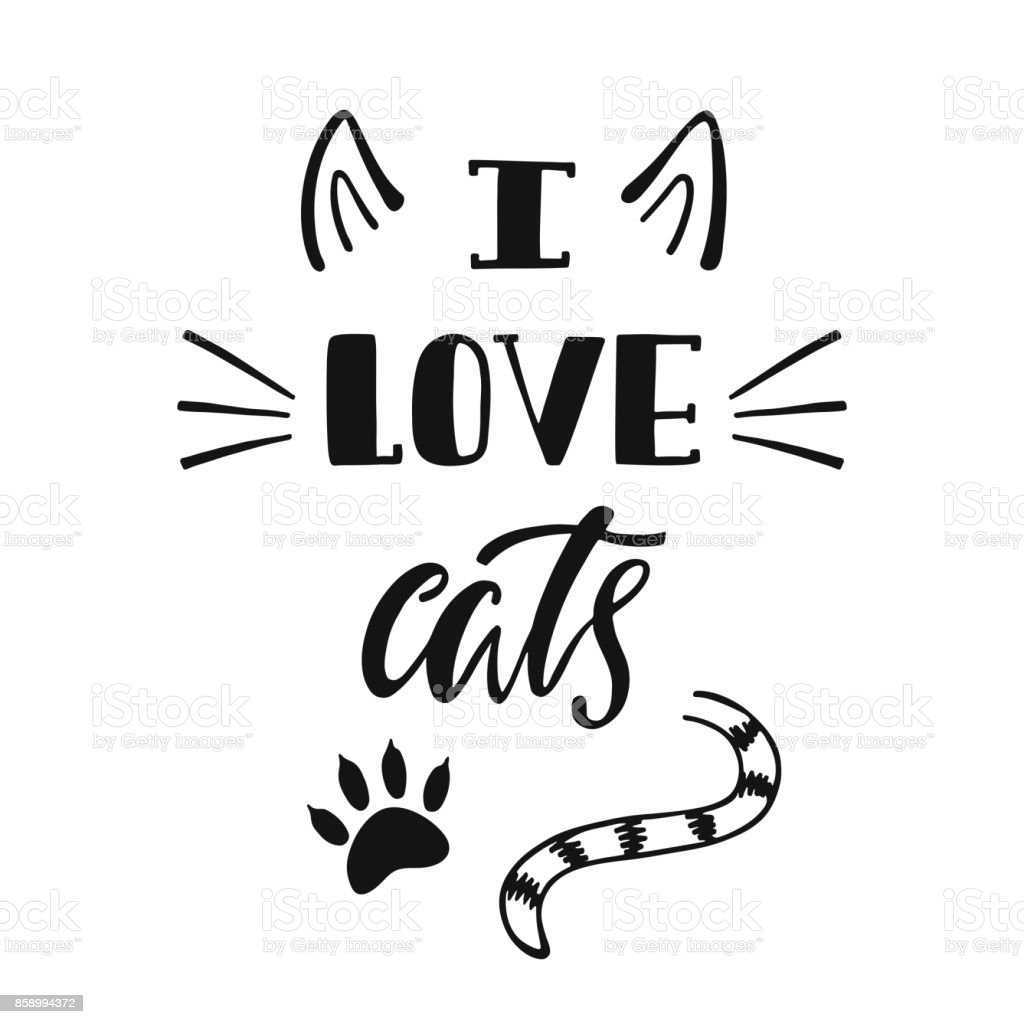 Download I Love Cats Handwritten Inspirational Quote About Cat ...