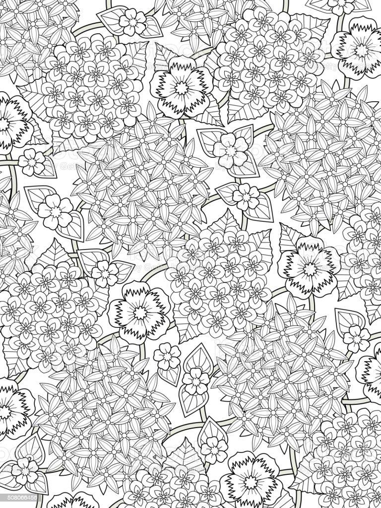 Adorable Hortensia Página Para Colorear - Arte vectorial de stock y ...