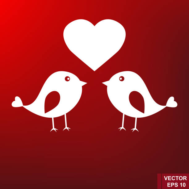 ilustrações de stock, clip art, desenhos animados e ícones de lovers of birds isolated on a red background. lovely. - pena de pássaro algodão