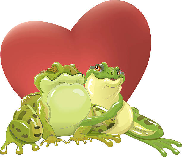 loving frogs vector art illustration