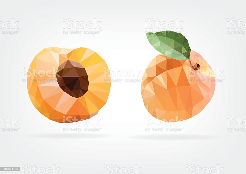 Low Poly Apricot vector art illustration