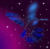 Low poly Blue Hummingbird with Galaxy background,animal geometric,Abstract vector.