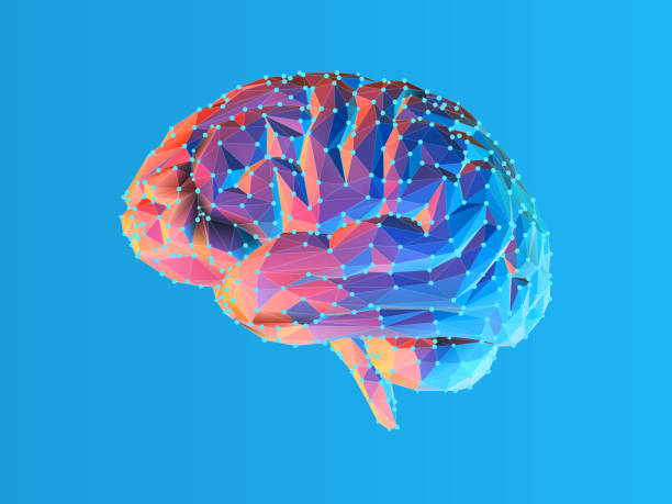 Low poly brain illustration isolated on blue BG Colorful blue and pink low poly side view human brain illustration with connection dots isolated on bright blue background brain stock illustrations