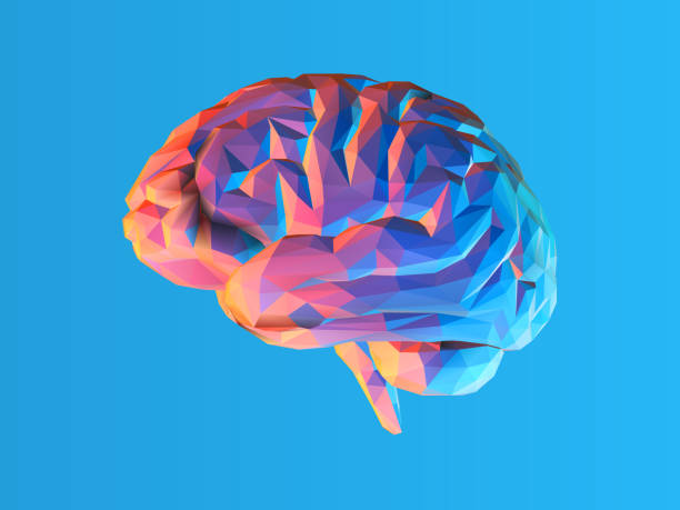Low poly brain illustration isolated on blue BG Colorful low poly side view brain illustration isolated on blue background brain stock illustrations