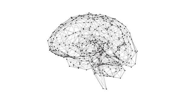 낮은 폴 리 인간의 두뇌 그림 흰색 bg에 빛나는 - brain stock illustrations