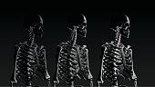 Low poly skeleton portrait side view in low key lighting