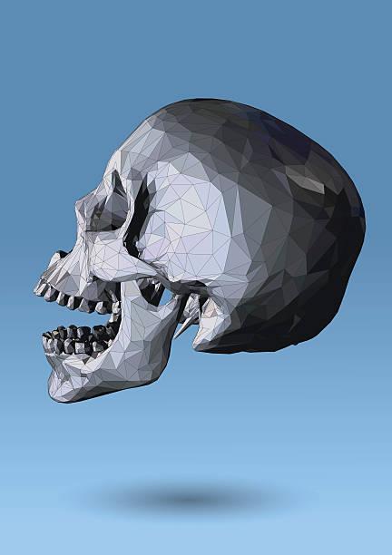 Royalty Free Human Skull Profile Clip Art, Vector Images
