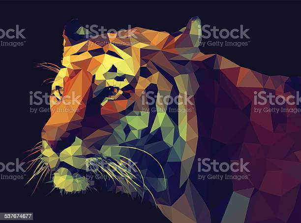 Low Poly Style Tiger Illustration Stock Illustration - Download Image Now