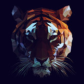 Polygonal tiger face illustration