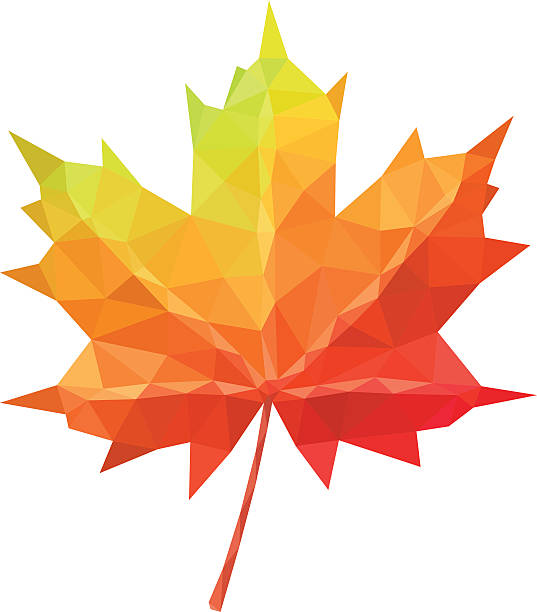 Low poly vector maple leaf geometric pattern Low poly vector maple leaf geometric pattern maple leaf stock illustrations