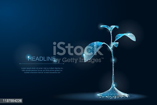 LowPoly Plant sprout ecological abstract concept. 3D render seedling tree leaves. Save planet nature environment grow life eco polygon triangles low poly vector illustration