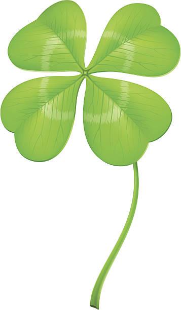 Lucky clover vector art illustration