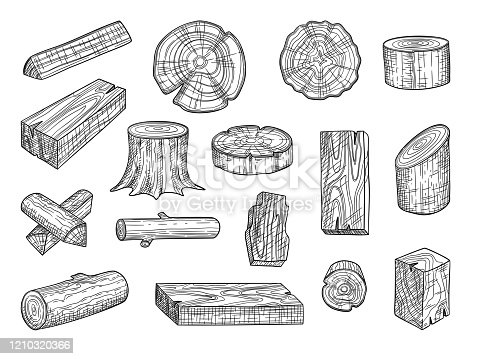 Lumber. Wooden trunks branch oak stacked log from tree vector hand drawn set. Lumber trunk wooden, hardwood oak, wood structure stump illustration