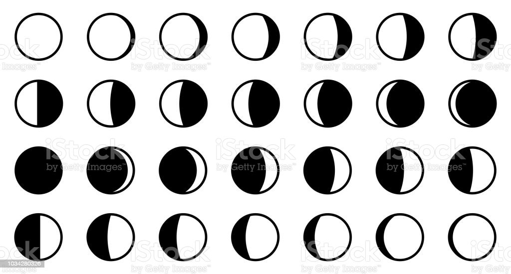 Lunar / moon phases cycle. All 28 shapes for each day - new, full, waxing, waning crescent, first, third quarter, gibbous.