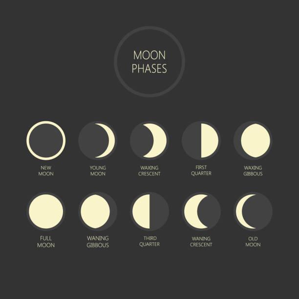 illustrazioni stock, clip art, cartoni animati e icone di tendenza di illustrazione vettoriale delle fasi lunari. ciclo delle fasi lunari, luna nuova, icone della luna piena. - luna gibbosa