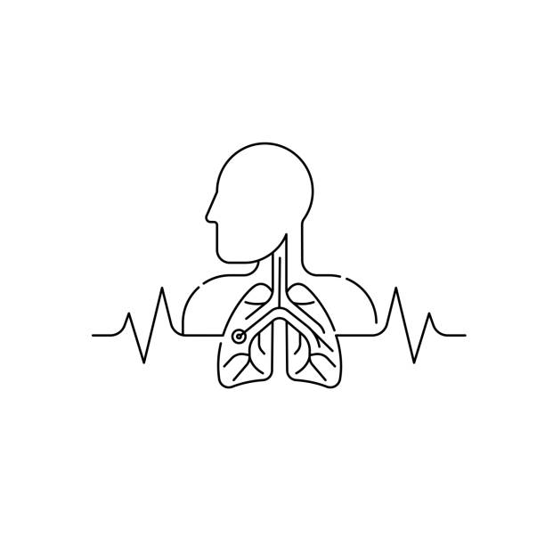 Lung icon isolated on white background Lung icon isolated on white background from medical collection. lung icon trendy and modern lung symbol for logo, web, app, UI. lung icon simple sign flat vector illustration for graphic. medical diagrams stock illustrations
