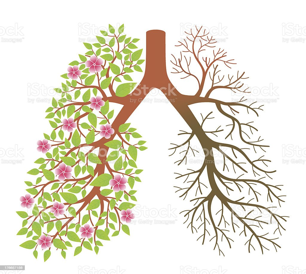 Lungs. Effect after smoking and disease royalty-free lungs effect after smoking and disease stock vector art & more images of addiction