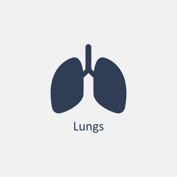 Lungs icon. Vector illustration Lungs icon. Human organs. Vector design lung stock illustrations