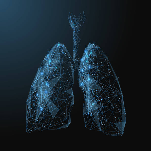 stockillustraties, clipart, cartoons en iconen met longen laag poly blauw - longen