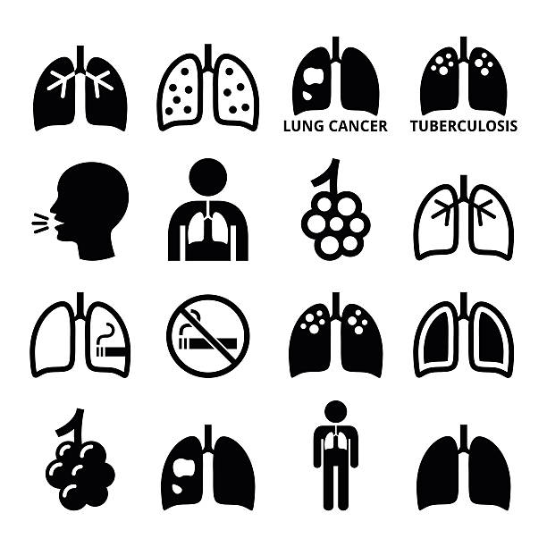 Lungs, lung disease icons set - tuberculosis, cancer Human body parts - lungs vector icons isolated on white  alveolar duct stock illustrations