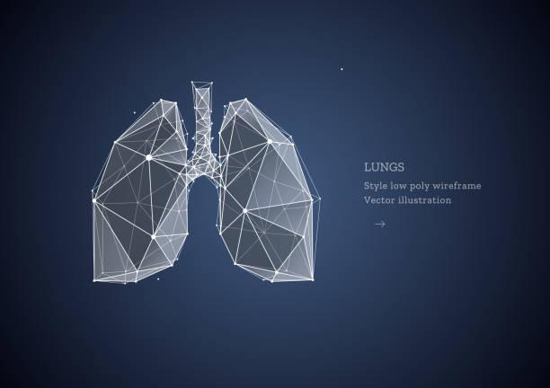 stockillustraties, clipart, cartoons en iconen met longen. veelhoekige wireframe samenstelling. banner concept, de behandeling van longziekten. abstracte illustratie geïsoleerd op donkere achtergrond. deeltjes zijn verbonden in een geometrisch silhouet. - longen