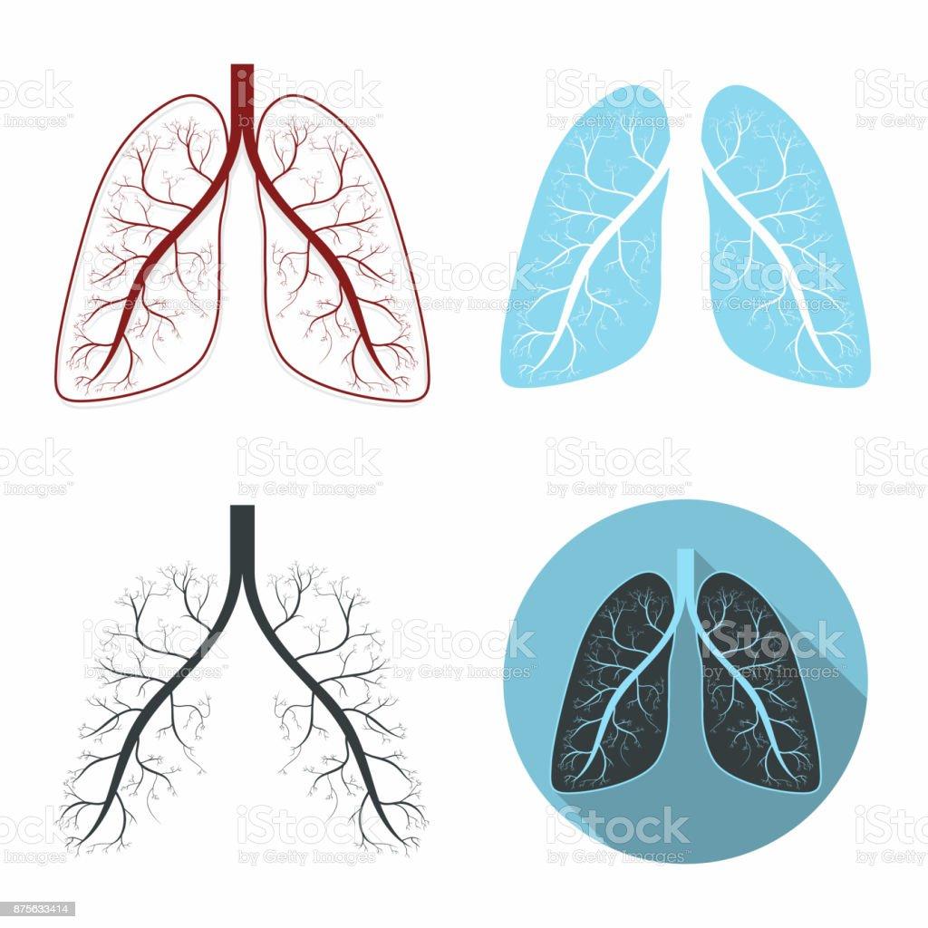 Lungen Festgelegt Menschliche Lunge Anatomie Symbolsatz Stock Vektor ...