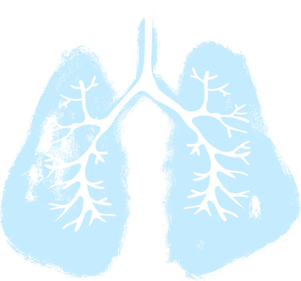 Lungs symbol. Hand drawn grunge design. Breathing. Lunge exercise. Lung cancer (asthma, tuberculosis, pneumonia). Respiratory system. World Tuberculosis Day. World Pneumonia Day. Health care Lungs symbol. Hand drawn grunge design. Breathing. Lunge exercise. Lung cancer (asthma, tuberculosis, pneumonia). Respiratory system. World Tuberculosis Day. World Pneumonia Day. Health care human lung stock illustrations