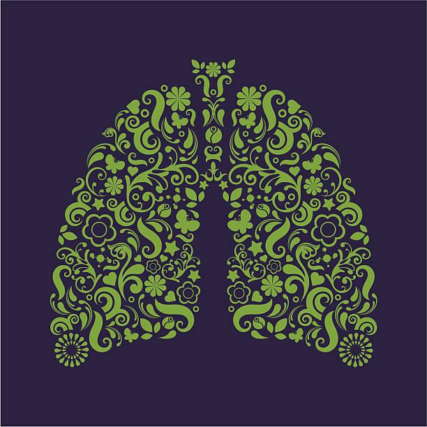 Płuc. – artystyczna grafika wektorowa