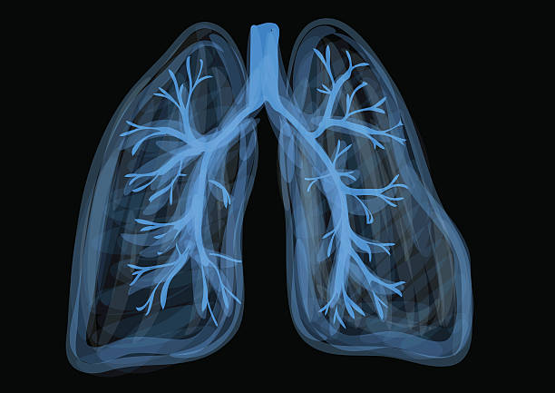 lungs lungs. blue abstract respiratory organ on black background human lung stock illustrations