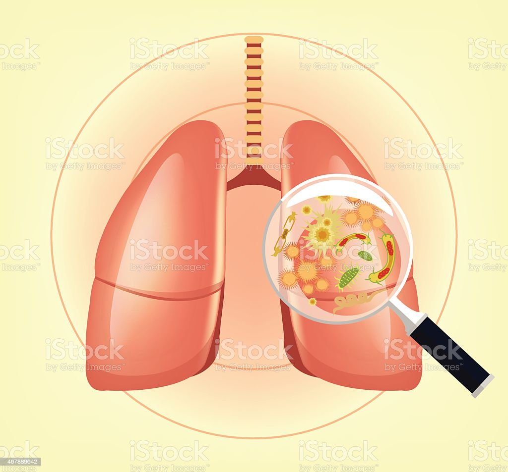 Lungs with germs and bacteria and magnifier. Vector illustration vector art illustration