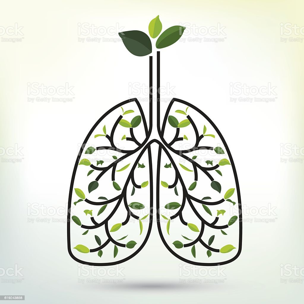 Lungs with Green leaf. Black outline vector illustration. vector art illustration