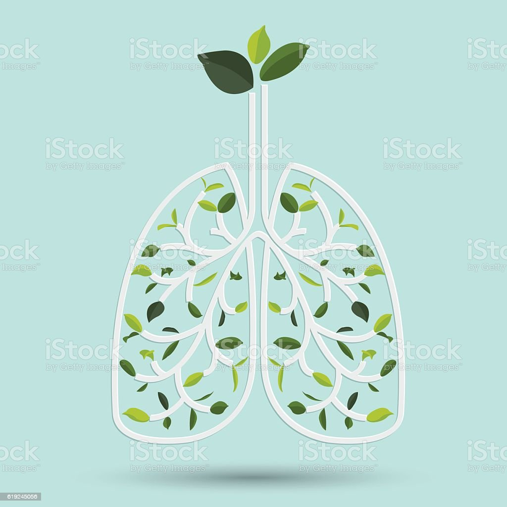 Lungs with Green leaf. vector illustration vector art illustration