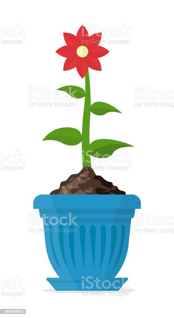 Flor de lujo con pétalos rojos en una olla azul. Ilustración de vector. - ilustración de arte vectorial
