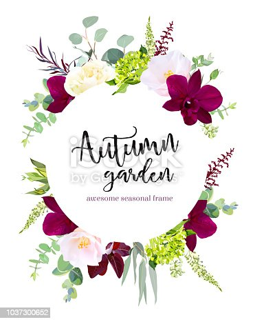 Luxury fall flowers vector design round banner frame. Dark orchid, pink camellia, yellow rose, burgundy red astilbe, green hydrangea, seeded eucalyptus and greenery. Autumn wedding card. Isolated
