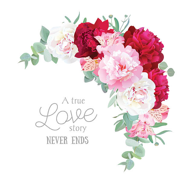 luxury floral vector frame with peony, alstroemeria lily - inkalilie stock-grafiken, -clipart, -cartoons und -symbole
