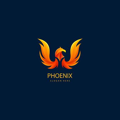 luxury phoenix logo concept. best phoenix bird logo design