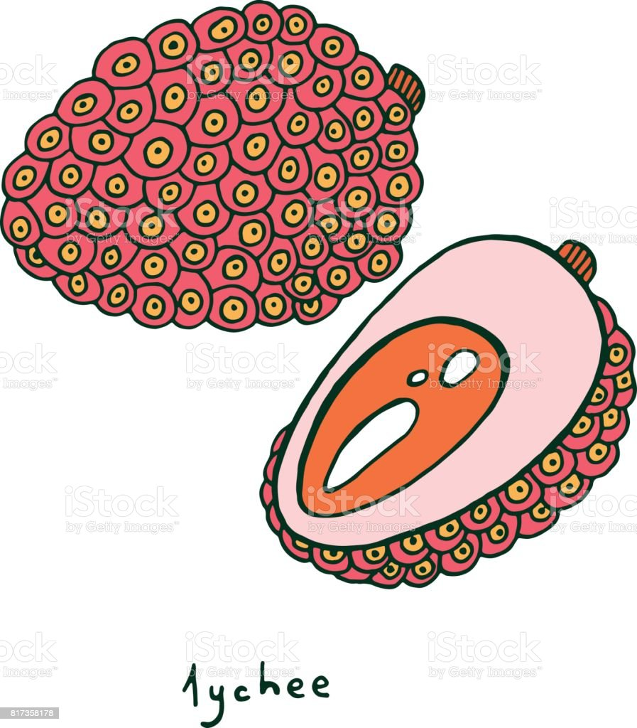 Lychee Meyve Boyama Sayfası Yetişkinler Için Boyama Kitapları Için