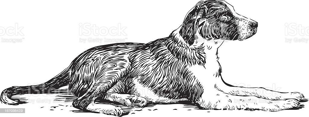 lying dog vector art illustration