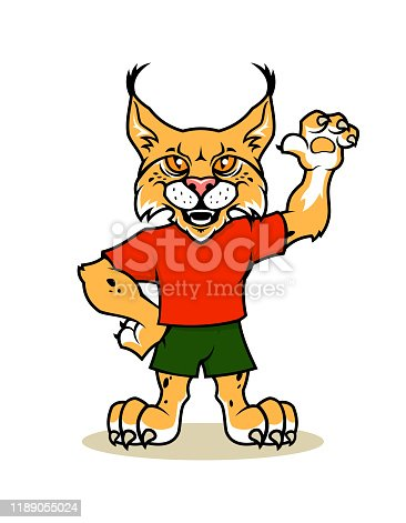 Lynx, bobcat, or wild cat vector mascot character