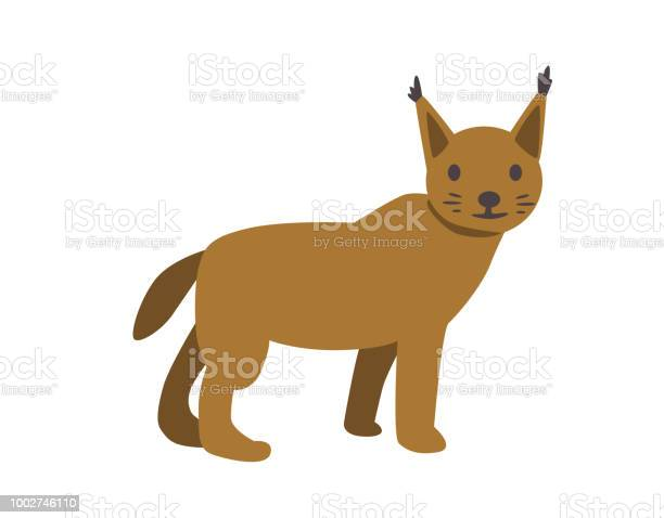 Lynx bobcat flat vector illustration isolated on white background vector id1002746110?b=1&k=6&m=1002746110&s=612x612&h=12exwy joauifmeguxcak ngpxxwhnxs5yv1g joqt8=