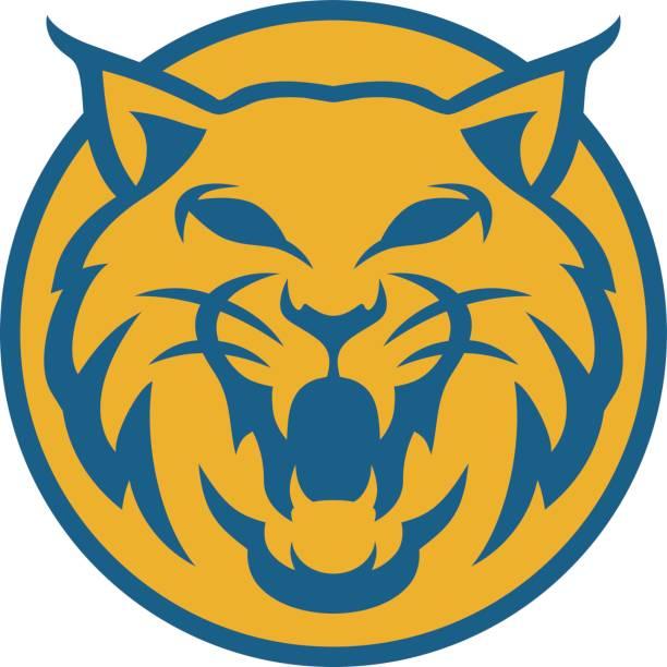 lynx head circle vector illustration lynx head circle vector illustration colors blue and yellow bobcat stock illustrations