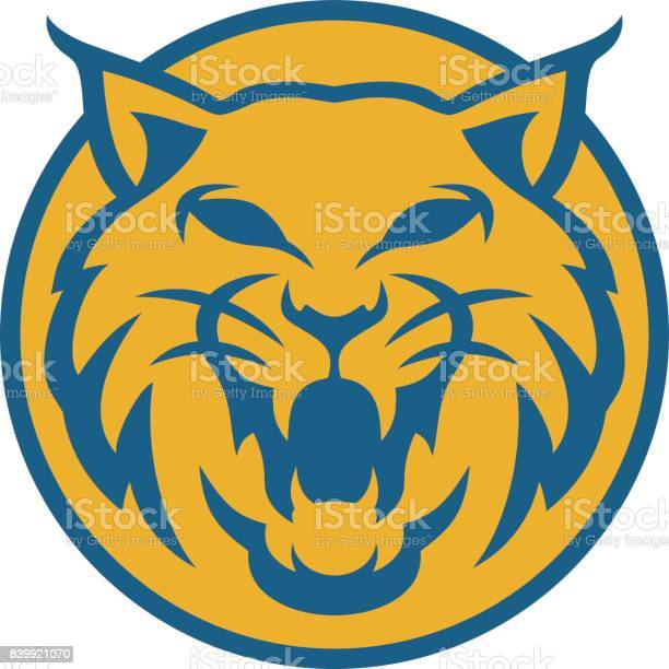 lynx head circle vector illustration colors blue and yellow