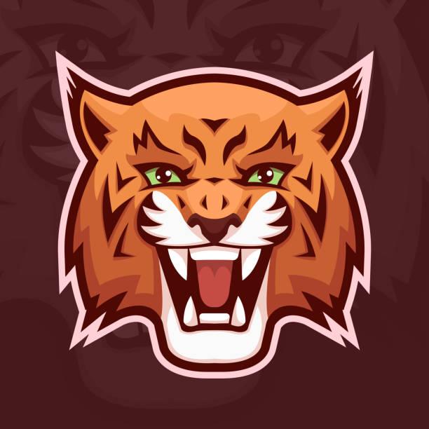 lynx Lynx mascot symbol. Wildcat head. Vector illustration, EPS 10. bobcat stock illustrations