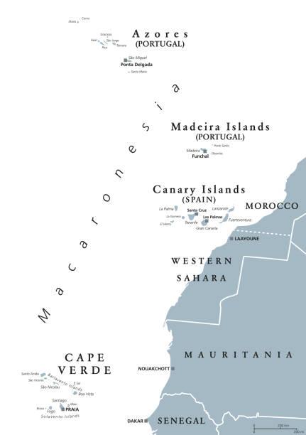 ilustrações de stock, clip art, desenhos animados e ícones de macaronesia, gray map, azores, cape verde, madeira, canary islands - funchal madeira