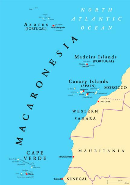 ilustrações de stock, clip art, desenhos animados e ícones de macaronesia political map - funchal madeira