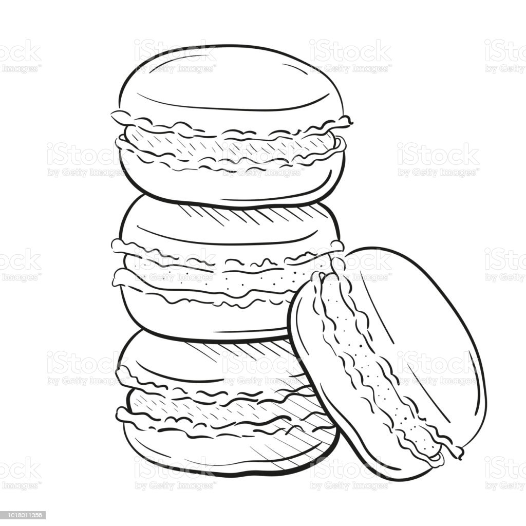 Macaroon Cakes Vector Illustration Isolated On White