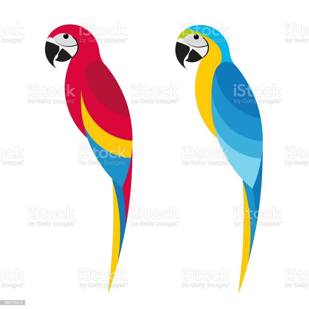 macaw 4 royalty-free macaw 4 stock illustration - download image now