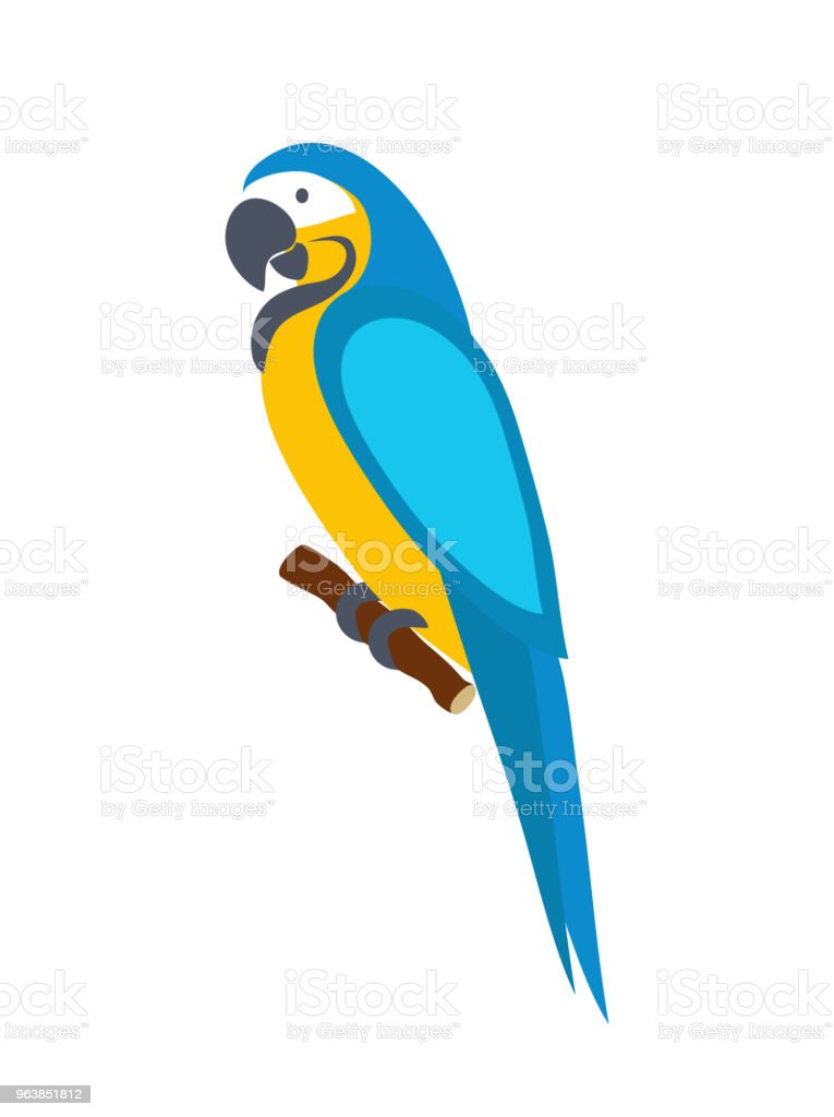 Macaw parrot. Isolated on white background. Vector illustration. - Royalty-free Animal Wildlife stock vector